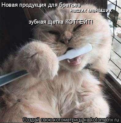 Котоматрица: Новая продукция для братьев наших меньших зубная щетка КОТГЕЙТ!