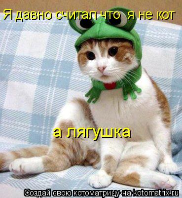 Котоматрица: Я давно считал что  я не кот а лягушка