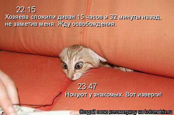 Котоматрица: 22:15 Хозяева сложили диван 15 часов и 32 минуты назад,  не заметив меня. Жду освобождения. 23:47 Ночуют у знакомых. Вот изверги!
