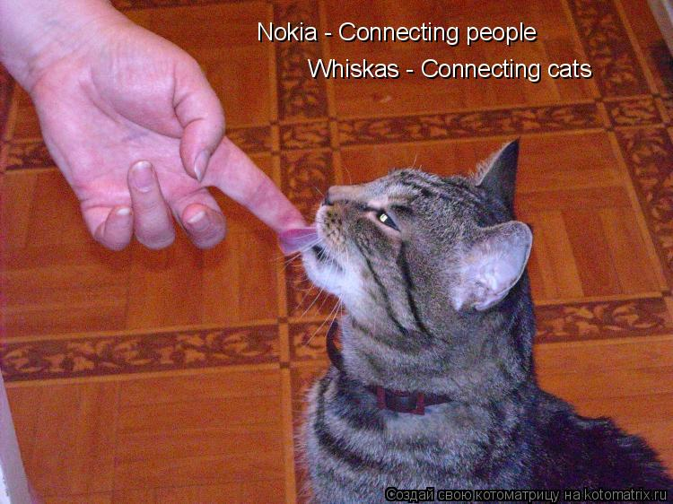 Котоматрица: Nokia - Connecting people Whiskas - Connecting cats