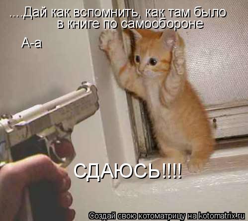 Котоматрица: ....Дай как вспомнить, как там было в книге по самообороне А-а СДАЮСЬ!!!!
