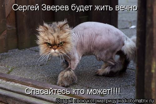 Котоматрица: Сергей Зверев будет жить вечно Спасайтесь кто может!!!!
