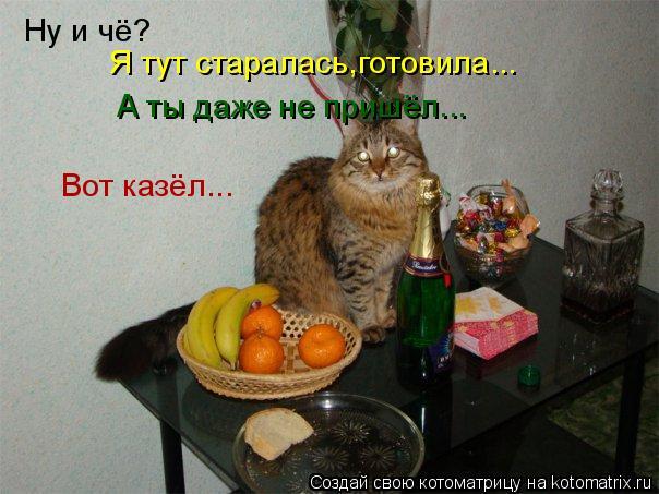 Котоматрица: Ну и чё? Я тут старалась,готовила... А ты даже не пришёл... Вот казёл...
