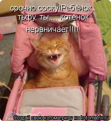 Котоматрица: срочно соску!Ребёнок,  тьфу, ты.... котёнок нервничает!!!!
