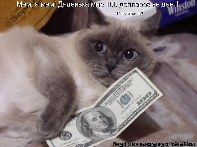 Котоматрица: Мам, а мам! Дяденька мне 100 долларов не даёт! Чё смотришь?!