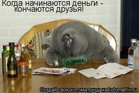 Котоматрица: Когда начинаются деньги -  кончаются друзья!