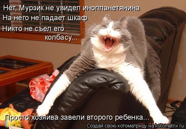 Котоматрица: Нет, Мурзик не увидел инопланетянина На него не падает шкаф Никто не съел его  колбасу... Просто хозяива завели второго ребенка...