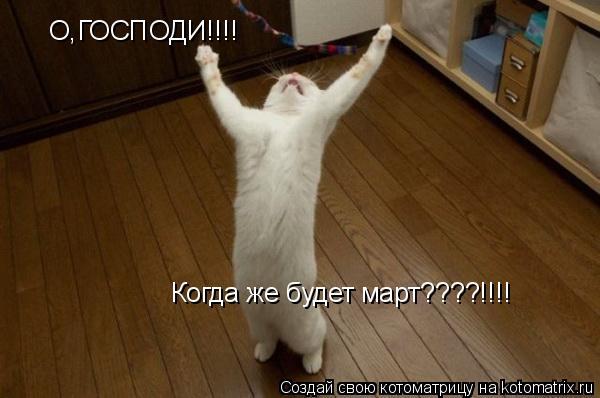Котоматрица: О,ГОСПОДИ!!!! Когда же будет март????!!!!