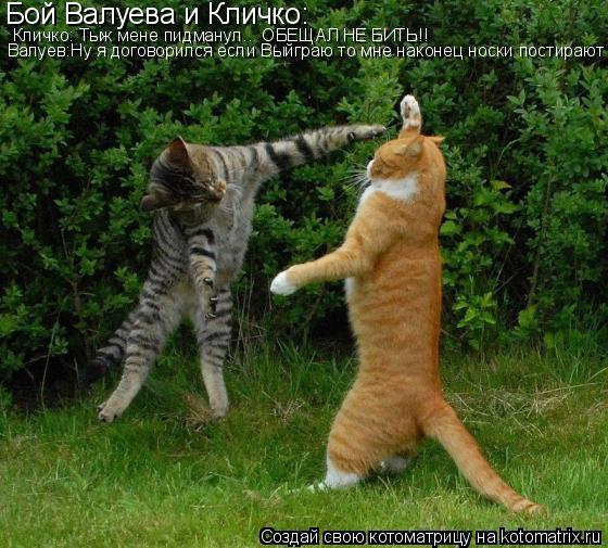 Котоматрица: Бой Валуева и Кличко: Кличко: Тыж мене пидманул... ОБЕЩАЛ НЕ БИТЬ!! Валуев:Ну я договорился если Выйграю то мне наконец носки постирают