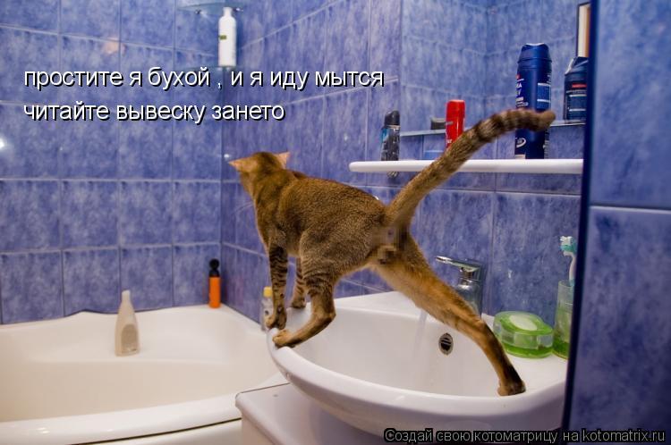 Котоматрица: простите я бухой , и я иду мытся читайте вывеску зането