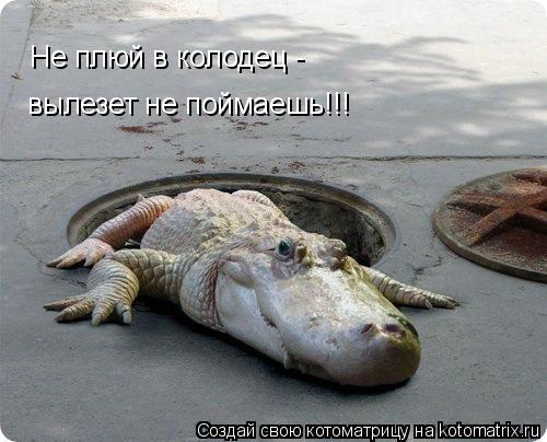 Котоматрица: Не плюй в колодец -  вылезет не поймаешь!!!