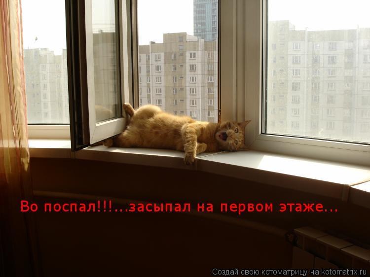 Котоматрица: Во поспал!!!...засыпал на первом этаже...