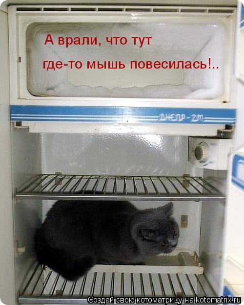 Котоматрица: А врали, что тут где-то мышь повесилась!..