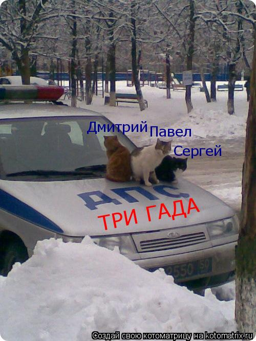 Котоматрица: Дмитрий Павел Сергей ТРИ ГАДА