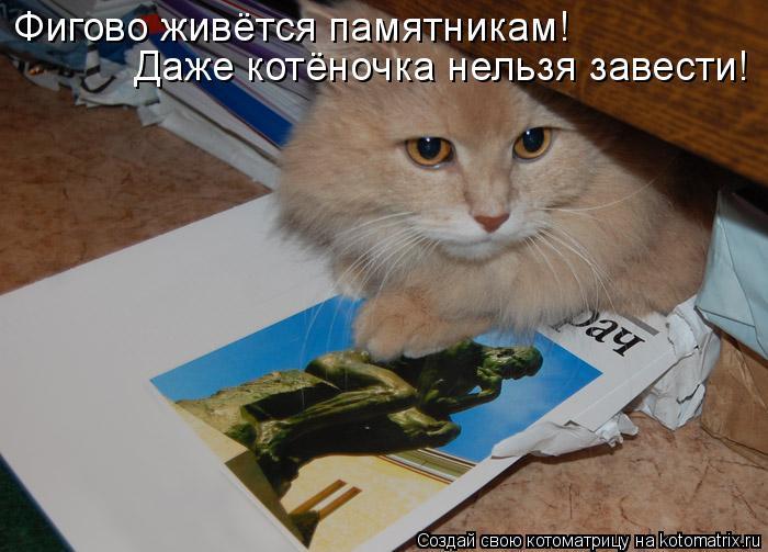 Котоматрица: Даже котёночка нельзя завести! Фигово живётся памятникам!