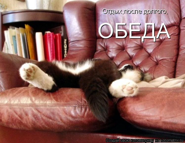 Котоматрица: Отдых,после долгого, ОБЕДА