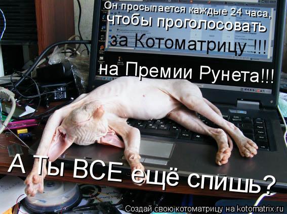 Котоматрица: А Ты ВСЕ ещё спишь? Он просыпается каждые 24 часа, чтобы проголосовать  на Премии Рунета!!! за Котоматрицу !!!