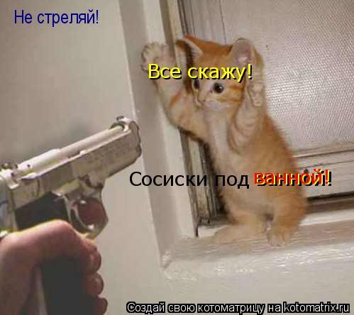 Котоматрица: Не стреляй! Сосиски под ванной! Все скажу! ванной! ванной!