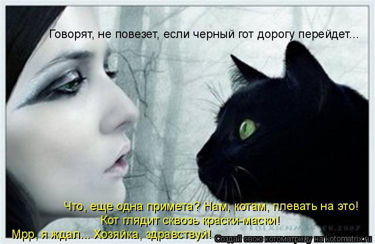 Котоматрица: Говорят, не повезет, если черный гот дорогу перейдет... Что, еще одна примета? Нам, котам, плевать на это! Кот глядит сквозь краски-маски! Мрр, я