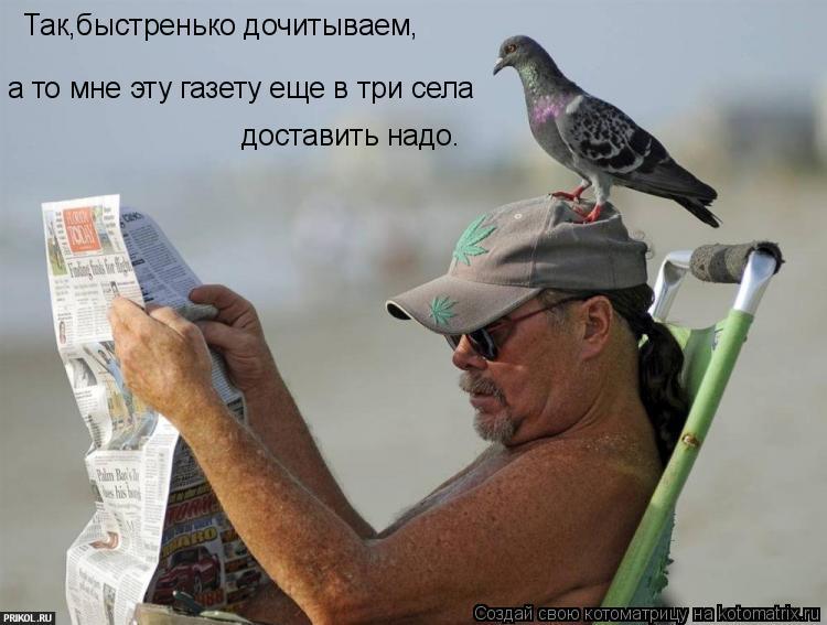 Котоматрица: Так,быстренько дочитываем, а то мне эту газету еще в три села  доставить надо.