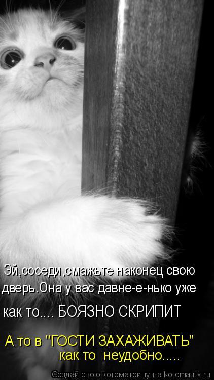 """Котоматрица: Эй,соседи,смажьте наконец свою дверь.Она у вас давне-е-нько уже как то.... БОЯЗНО СКРИПИТ  как то  неудобно..... А то в """"ГОСТИ ЗАХАЖИВАТЬ"""""""
