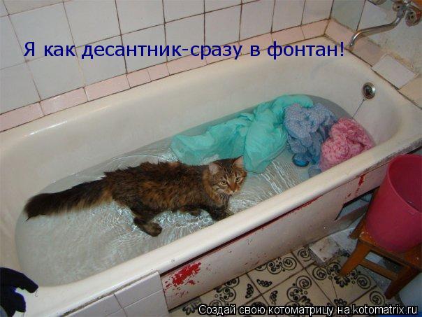Котоматрица: Я как десантник-сразу в фонтан!