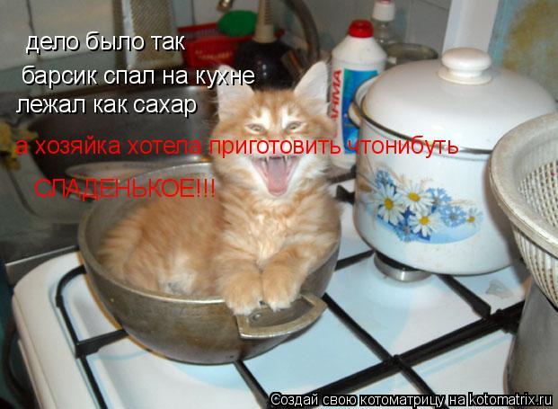 Котоматрица: дело было так барсик спал на кухне лежал как сахар  а хозяйка хотела приготовить чтонибуть  СЛАДЕНЬКОЕ!!!