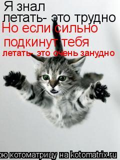 Котоматрица: Я знал летать- это трудно подкинут тебя Но если сильно летать- это очень занудно