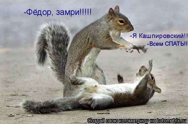 Котоматрица: -Фёдор, замри!!!!! -Я Кашпировский!! -Всем СПАТЬ!!