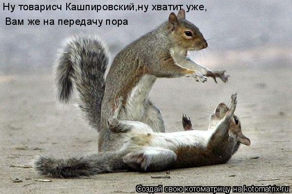 Котоматрица: Ну товарисч Кашпировский,ну хватит уже, Вам же на передачу пора