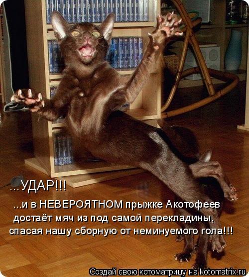 Котоматрица: ...УДАР!!!  ...и в НЕВЕРОЯТНОМ прыжке Акотофеев  достаёт мяч из под самой перекладины,  спасая нашу сборную от неминуемого гола!!!