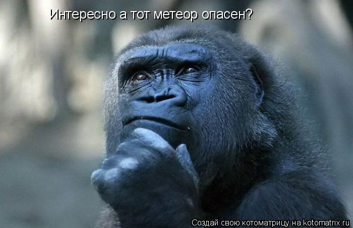 Котоматрица: Интересно а тот метеор опасен?