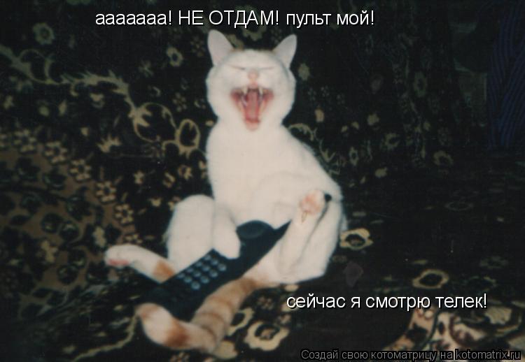 Котоматрица: ааааааа! НЕ ОТДАМ! пульт мой! сейчас я смотрю телек!