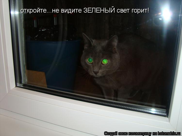 Котоматрица: откройте...не видите ЗЕЛЕНЫЙ свет горит!