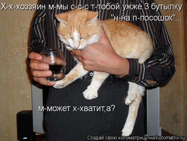 "Котоматрица: Х-х-хоззяин м-мы с-с-с т-тобой ужже 3 бутылку ""н-на п-посошок""... м-может х-хватит,а?"