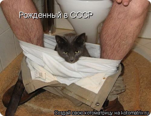 Котоматрица: Рожденный в СССР