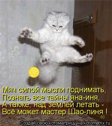 Котоматрица: Мяч силой мысли поднимать, Познать все тайны яна-иня, А также, над землей летать - Всё может мастер Шао-линя ! :о)