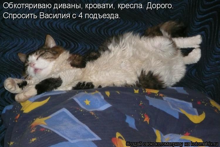 Котоматрица: Обкотяриваю диваны, кровати, кресла. Дорого.  Спросить Василия с 4 подъезда.