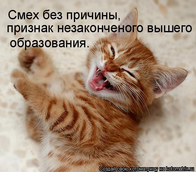 Котоматрица: Смех без причины, признак незаконченого вышего образования.  образования.
