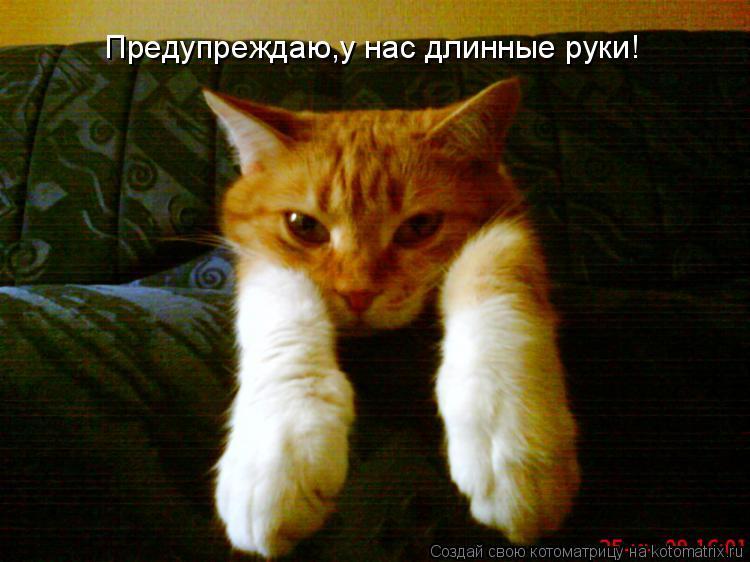 Котоматрица: Предупреждаю,у нас длинные руки!