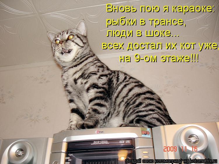 Котоматрица: Вновь пою я караоке: рыбки в трансе, люди в шоке... всех достал их кот уже, на 9-ом этаже!!!