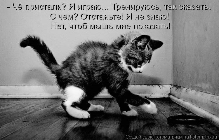 Котоматрица: - Чё пристали? Я играю... Тренируюсь, так сказать. С чем? Отстаньте! Я не знаю!  Нет, чтоб мышь мне показать!