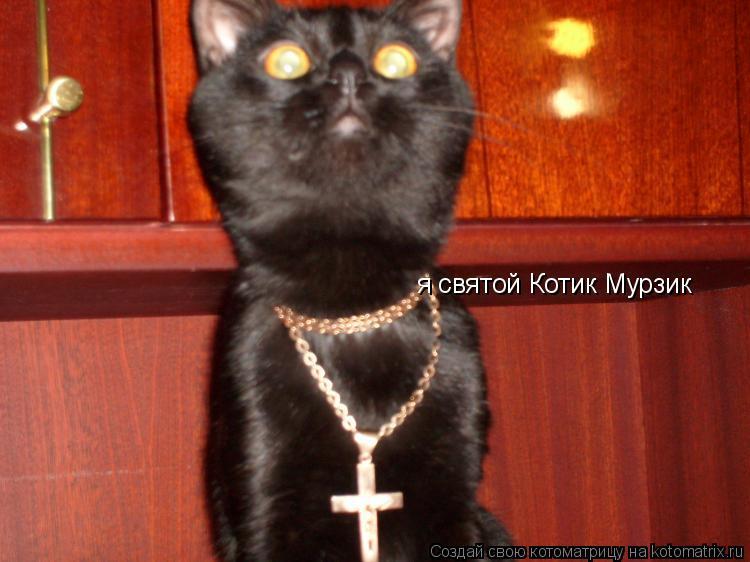 Котоматрица: я святой Котик Мурзик