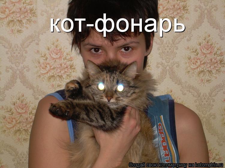 Котоматрица: кот-фонарь