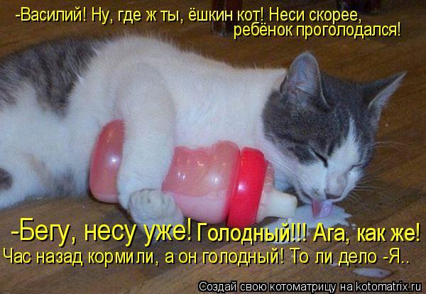 Котоматрица: -Василий! Ну, где ж ты, ёшкин кот! Неси скорее, ребёнок проголодался! -Бегу, несу уже! Голодный!!! Ага, как же!  Час назад кормили, а он голодный! Т