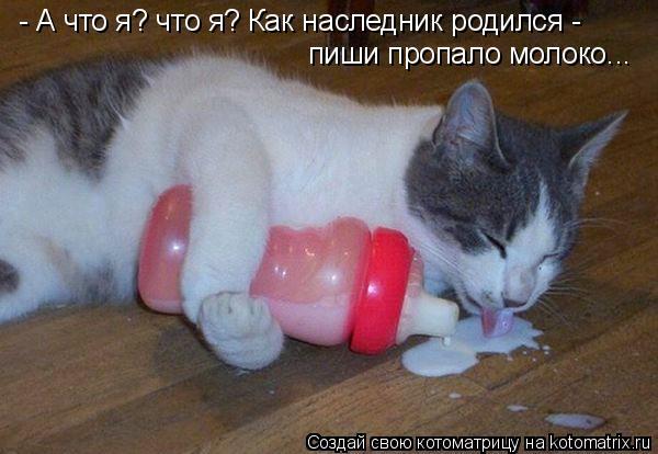 Котоматрица: - А что я? что я? Как наследник родился -  пиши пропало молоко...