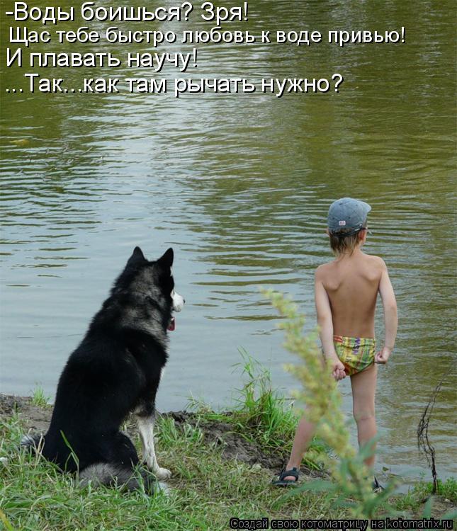 Котоматрица: -Воды боишься? Зря! Щас тебе быстро любовь к воде привью! И плавать научу! ...Так...как там рычать нужно?