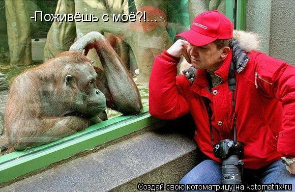 Котоматрица: -Поживёшь с моё?!...