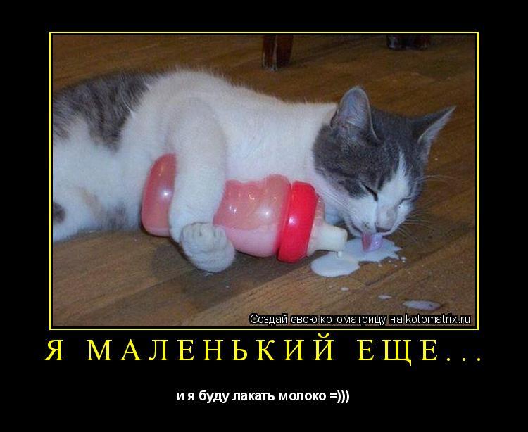 Котоматрица: я маленький еще... и я буду лакать молоко =)))
