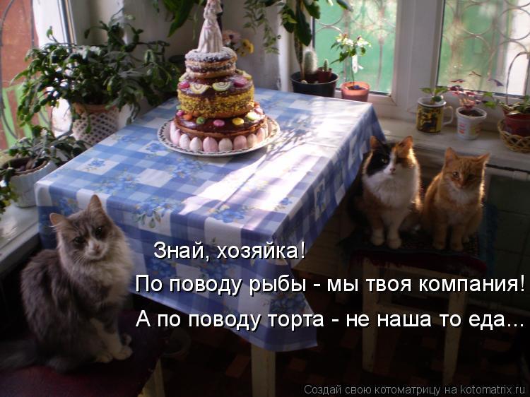 Котоматрица: Знай, хозяйка! По поводу рыбы - мы твоя компания! А по поводу торта - не наша то еда...